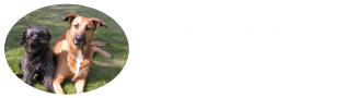 Dierenpension Mobomax Logo